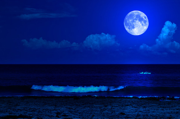 blue_moon5838.jpg