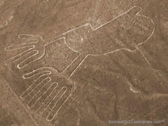 hand-nazca5541-001.jpg