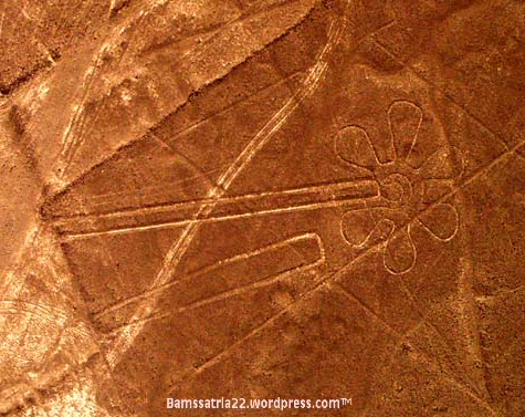 nazca_shapes_and_flower3747-001.jpg