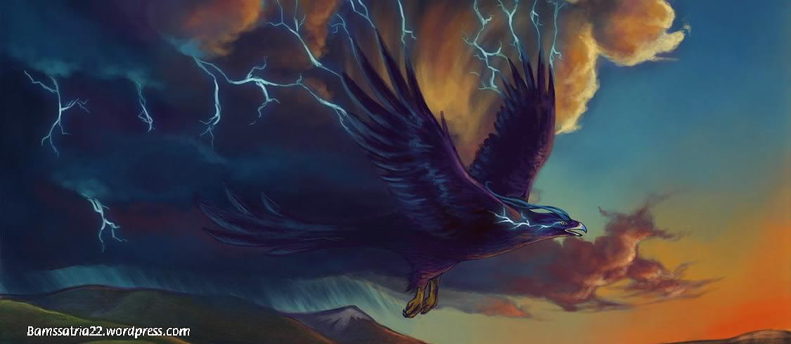 thunderbird-002.jpg