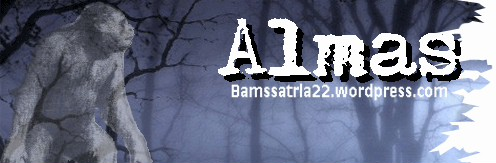 almasheader-001.jpg