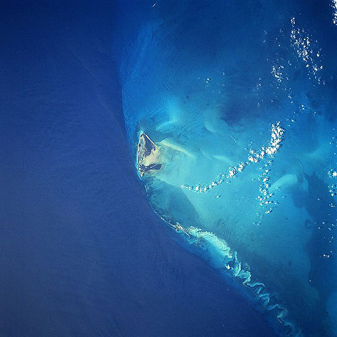 480px-bimini_island.jpg