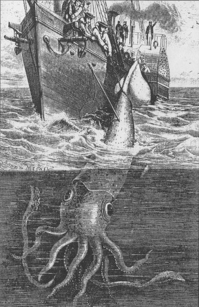 389px-alecton_giant_squid_1861-001.jpg