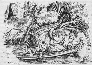 fawcett's-giant-anaconda.jpg