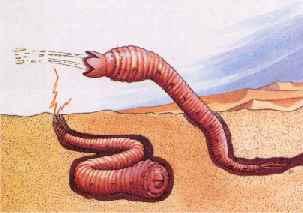 mongolian-death-worm.jpg
